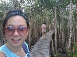 Sue B - Profile for Pet Hosting in Australia