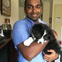 NITHIN C - Profile for Pet Hosting in Australia