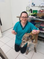 Prue L - Profile for Pet Hosting in Australia