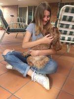Jade Y - Profile for Pet Hosting in Australia
