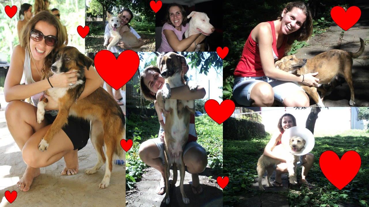 Pet Lover in Cairns