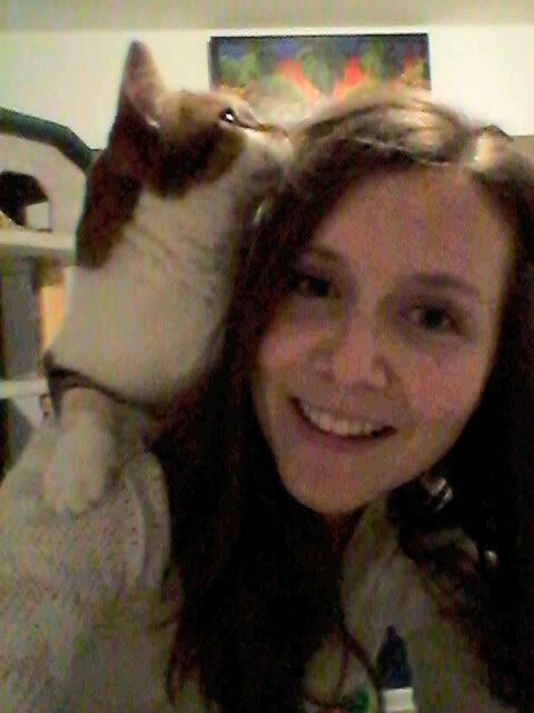 Loving Cat Sitter in Sunshine Coast