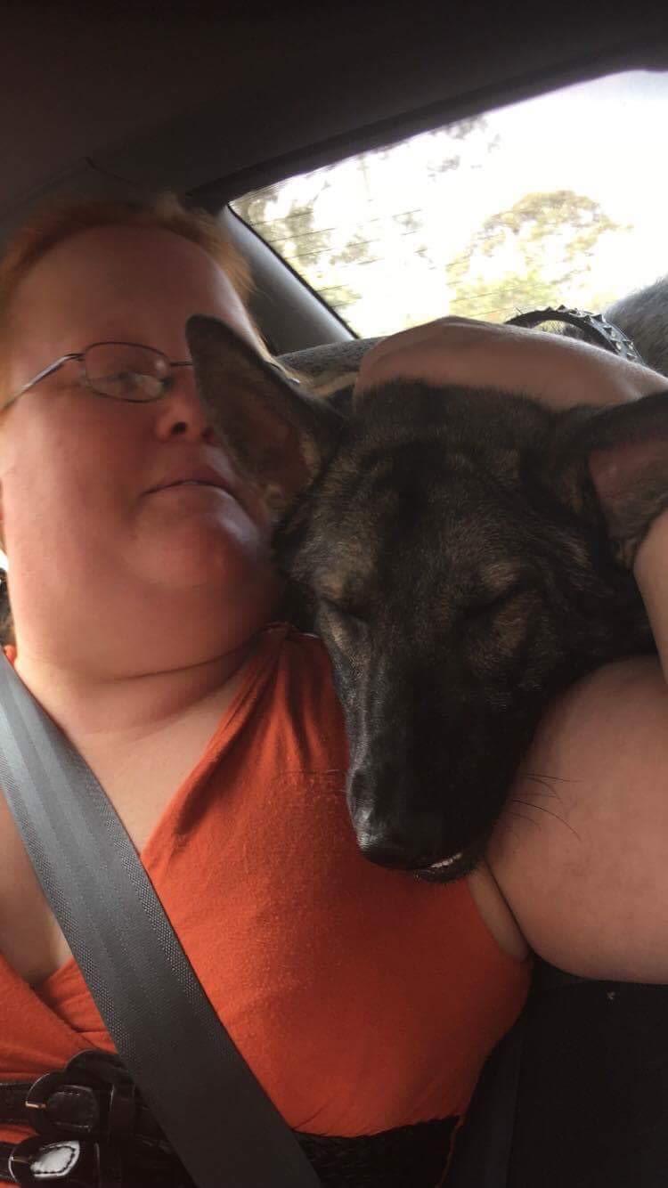 Lifetime animal lover and carer