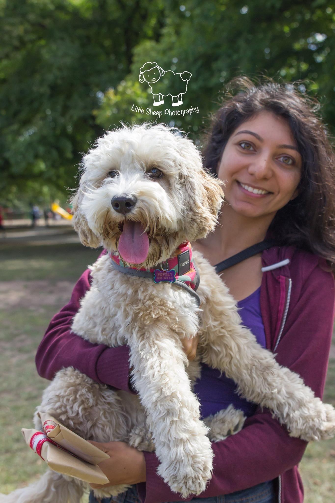 Dog lover and qualified dog trainer SE Melbourne