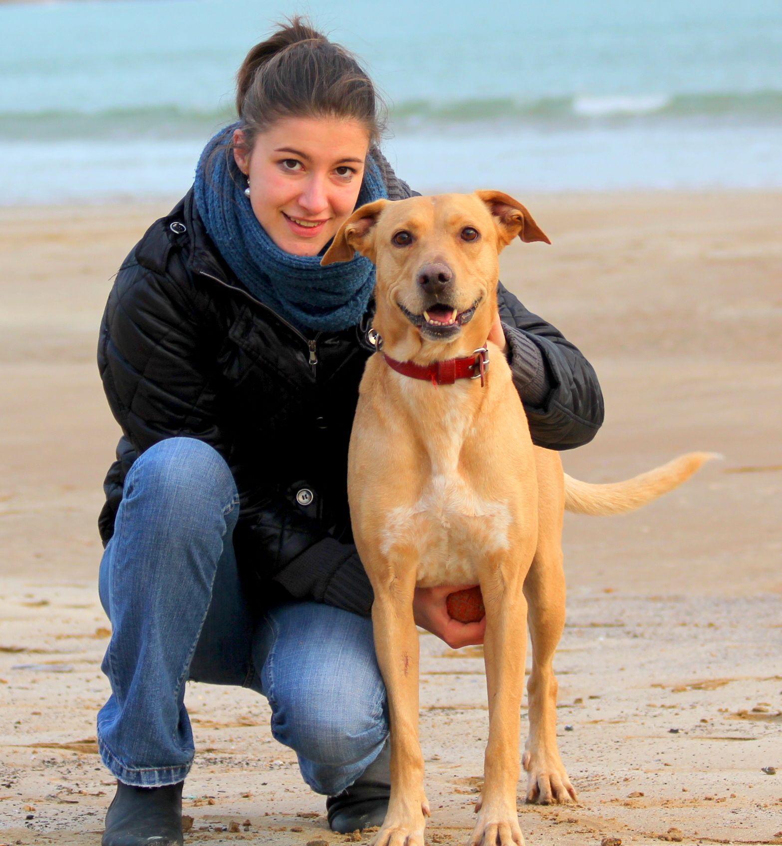 Experienced and reliable animals lover in Sydney ! :-)