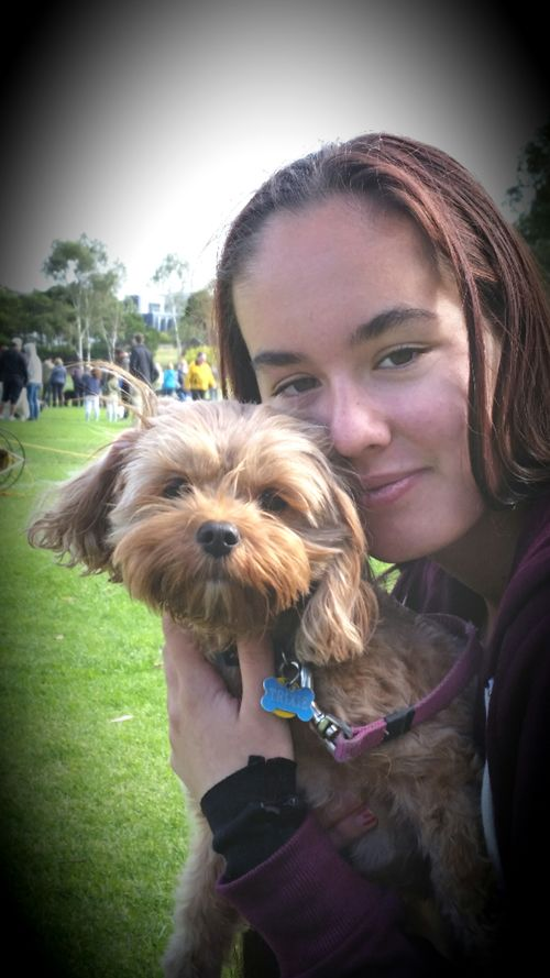 Large dog walking footscray 30 sitters madpaws obsessed pet loving family in maidstone solutioingenieria Choice Image