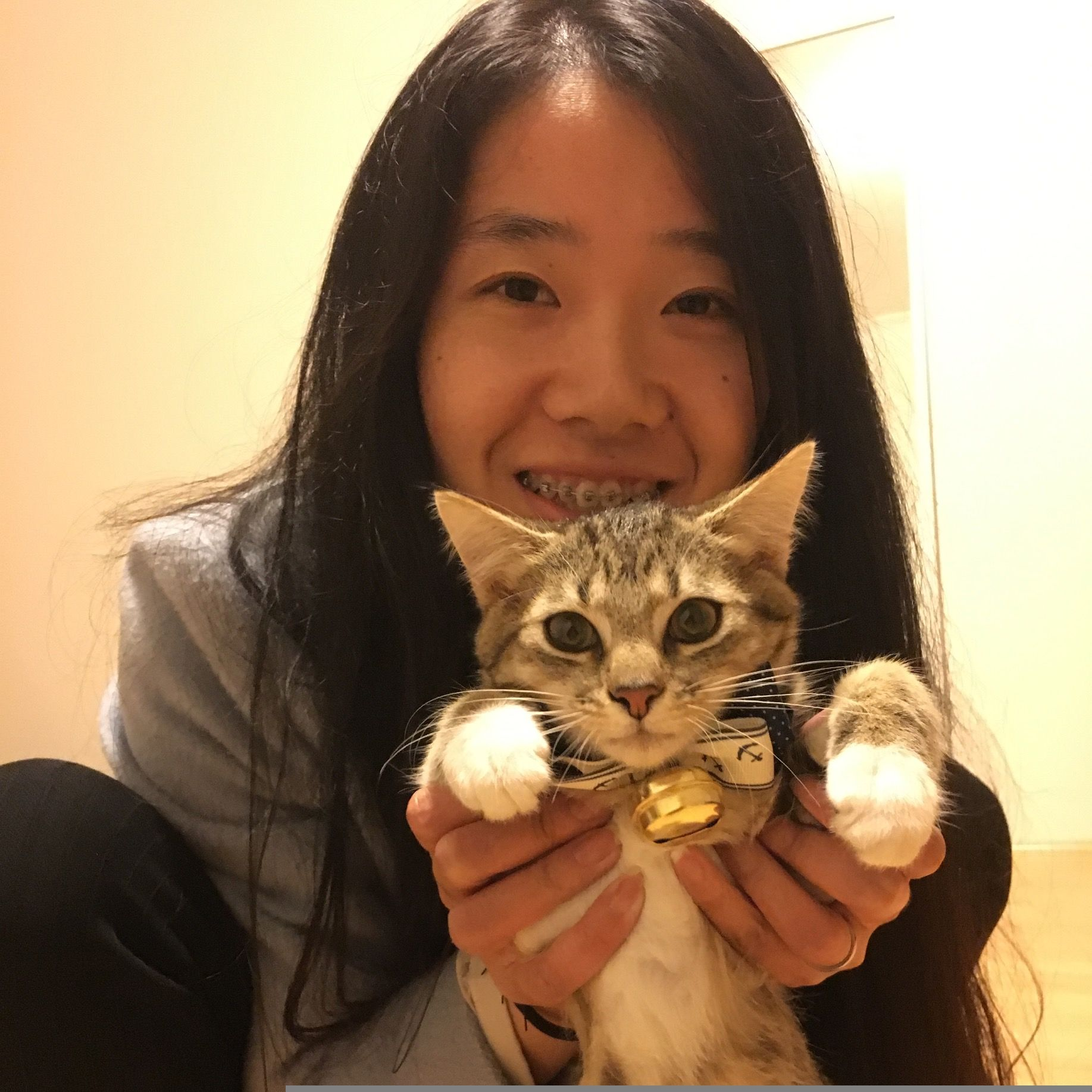 Cat lover in western Sydney. 12 years experience in raising kittens & cats.