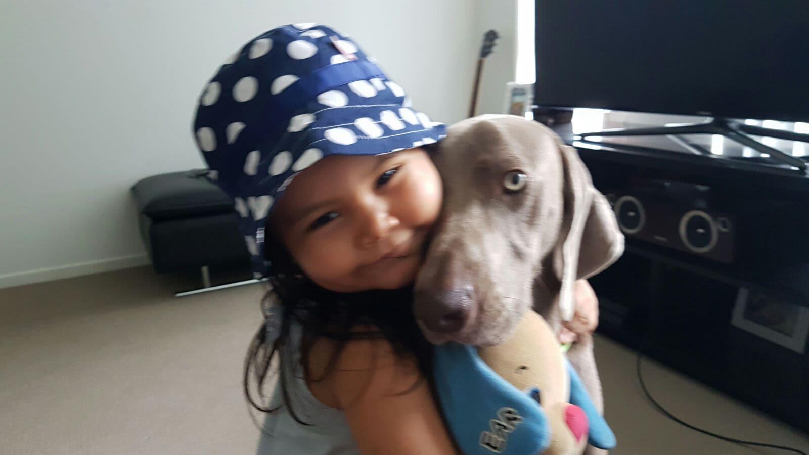 Loving pet family in Woy Woy