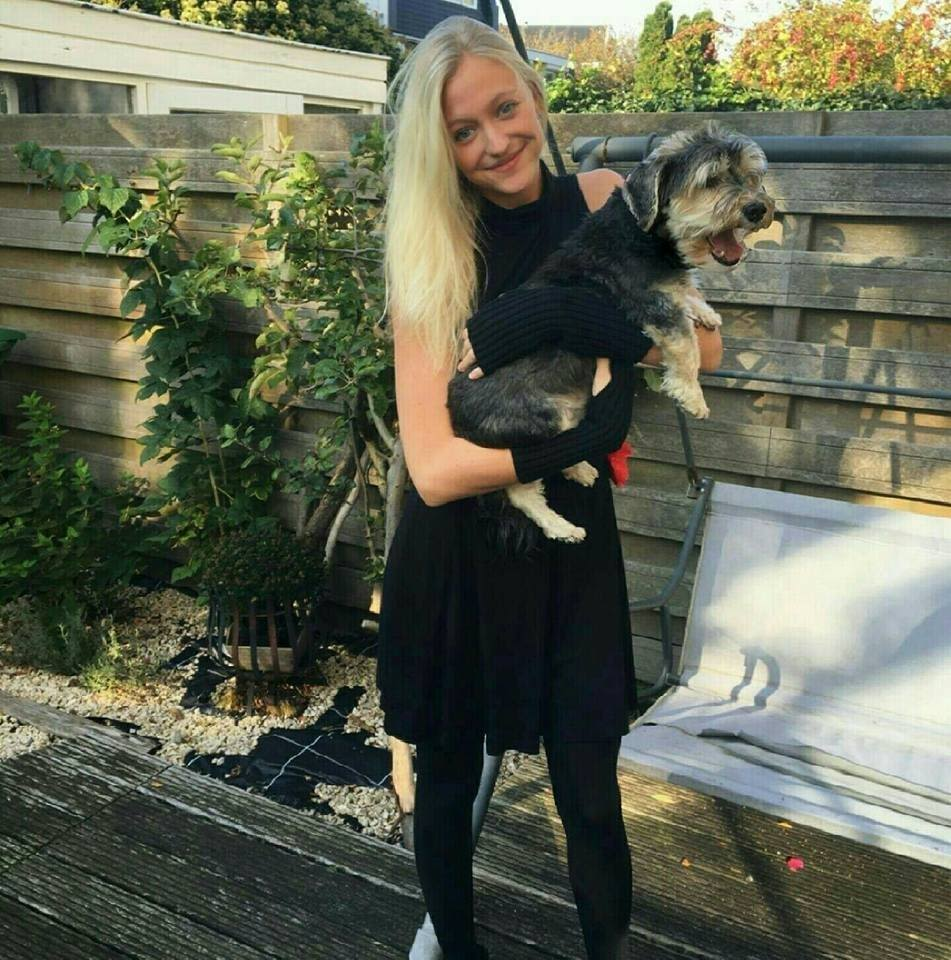 Dog grooming melbourne 68 sitters madpaws loving pet sitter located in fitzroy north solutioingenieria Image collections