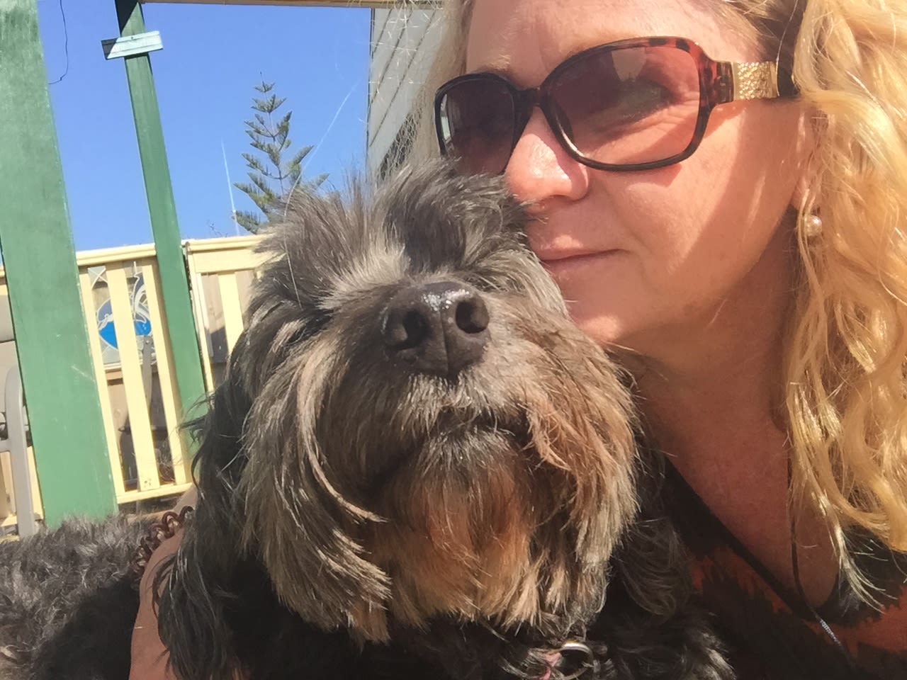 Newcastle mother and son dogsitting team
