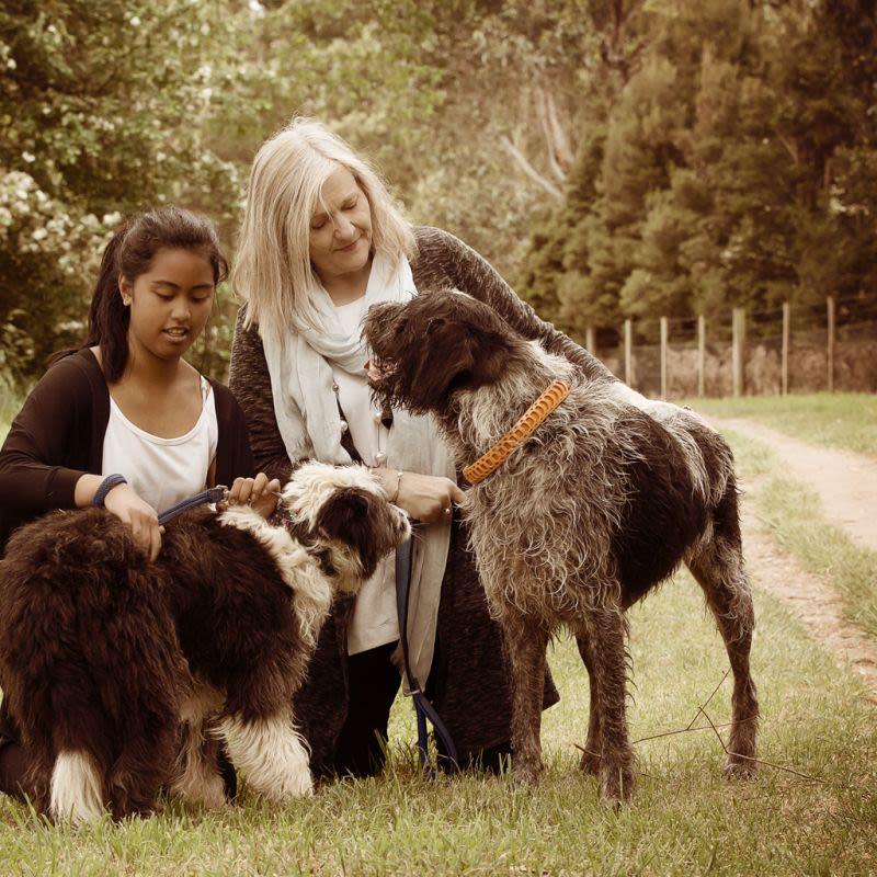 Best Buddy Pet Care - Launceston