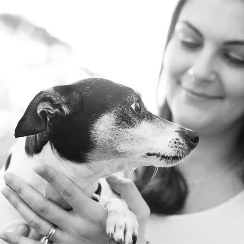 Thornleigh: Warm and loving day care for your beloved pet