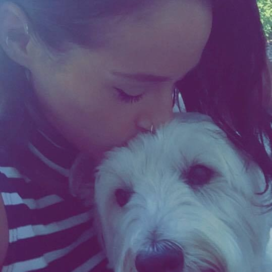 Pooch lover from Hawthorn, Melbourne