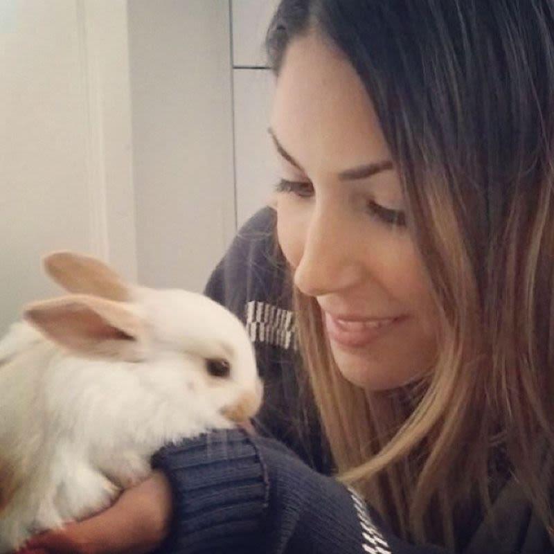 BOARD MY BUNNY - Rabbit Boarding, Sitting & Care