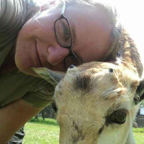 Experienced veterinary nurse & animal lover