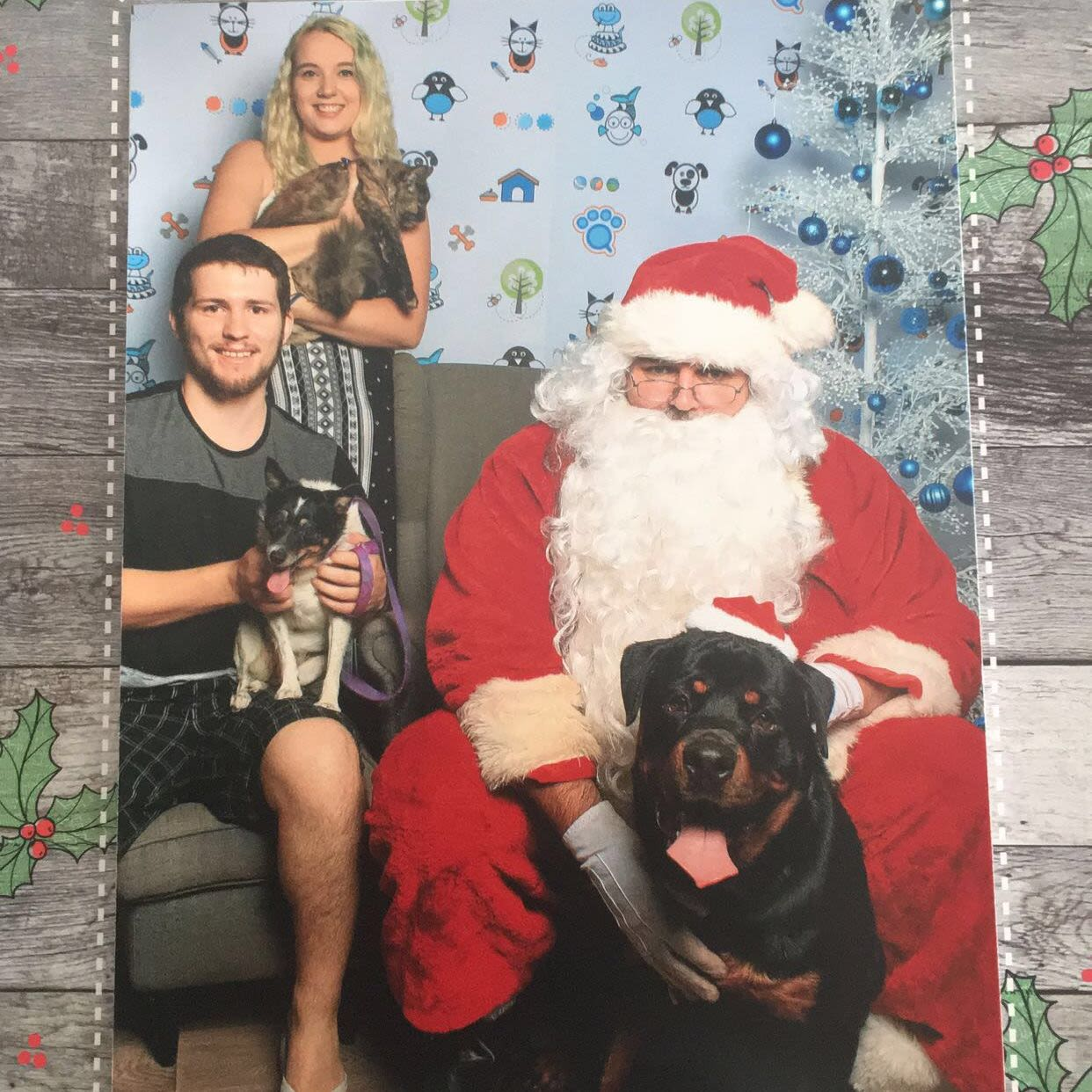 Loving Pet Family in Newcastle