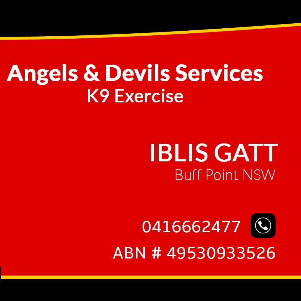 Angels & Devils K9 Excercise Central Coast NSW