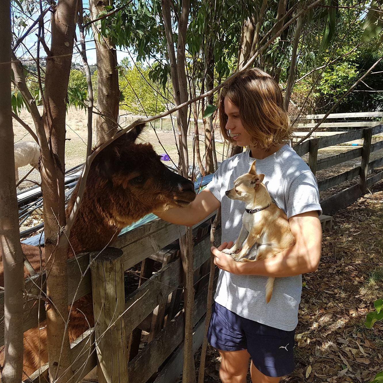 Home and Pet Care Launceston