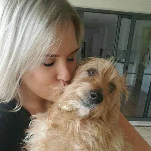 loving Pet sitter available in Inner and Eastern suburbs of Sydney