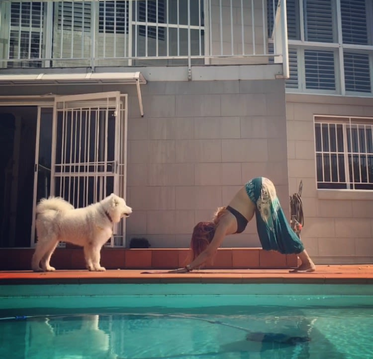 Animal lover looking for pets to walk, sit for or hang out with! Love and care provided in Bondi Junction or Eastern Suburbs area