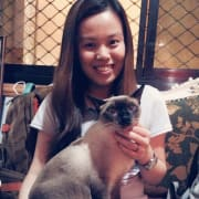 Pet care and host in the city
