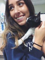 Cat-loving Vet student household