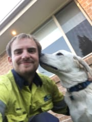 Reliable and experienced dog handler