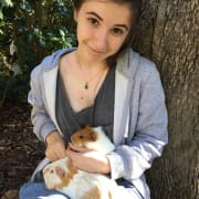 Animal loving student looking to meet special pets