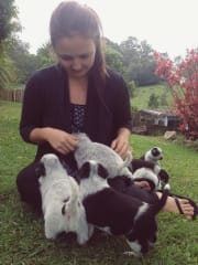 Friendly, caring and trustworthy pet sitter