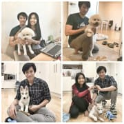 Pets lover group