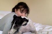 Greyhound owner and Vet Nurse Student