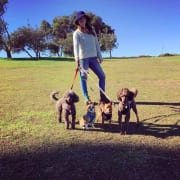 Eastern Suburbs Dog Walking, Pet Minding And Day Care!