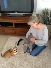 Feathered, Furry, Scaly or Finned -I am here to care for your pets, whatever they may be.
