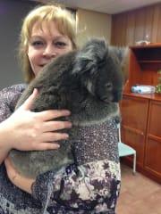 Veterinary teacher, nurse, student, available for loving care