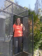 Bird Minder in Theodore, professional aviary facilities.