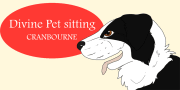 Divine Pet Sitting Service Cranbourne