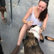 Loving Dog Sitter in Forest Glen