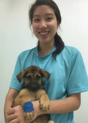 Veterinary Student To Personally Care For Your Beloved Pet