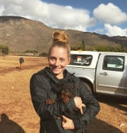 Veterinary Medicine student with great care,respect and love for animals