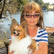 Pet loving retired couple Ex Papillon breeder in Wannanup.