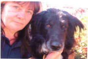 Creature Comfort Professional Pet Care.