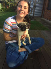 Caring Animal Lover in Lennox Head/ Ballina