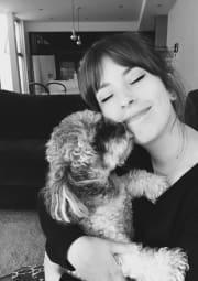 Friendly animal lover and dog whisperer, outer CBD