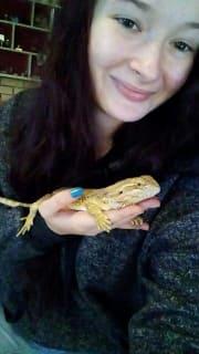 Kayla's little pet home in Kingston