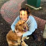 Doggy lover in Norwood that can't have her own pets