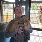 RSPCA volunteer, Animal Student and Animal Enthusiast