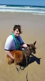 Canine lovers Brisbane