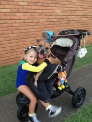Animal Loving Pet-minding home who will make your pet feel like part of our family.