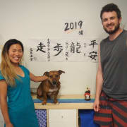 Reliable, Trustworthy Japanese Animal Lover in Glen Huntly