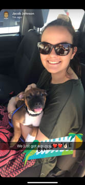 Loving, caring & compassionate Pet Sitter and Walker